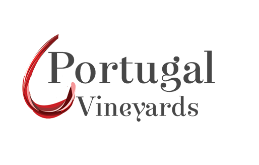 portugal vineyards